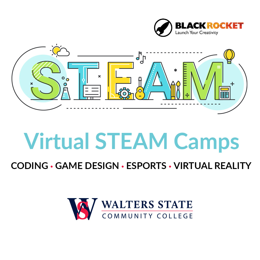 Virtual STEAM Camps